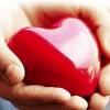 Закон о трансплантации органов
