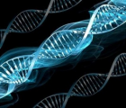 «Неизлечимые» болезни излечимы? В Европе приступают к генной терапии