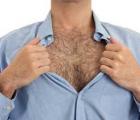 Чем больше у мужчины волос на теле, тем он умнее?  10 фактов о волосах на мужском теле