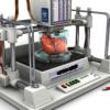 Как напечатать на 3D-принтере почку или сердце? Об опытах профессора Энтони Атала